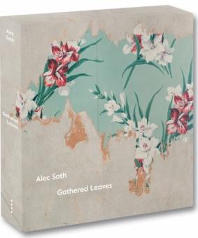 SOTH, Alec - Gathered Leaves