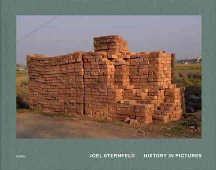 STERNFELD, Joel - History in Pictures
